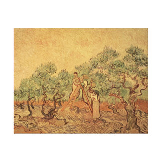 The Olive Grove, 1889 Canvas Prints