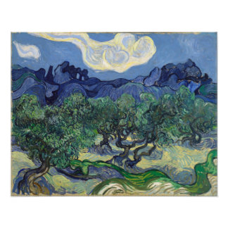 The Olive Trees by Vincent Van Gogh Photograph