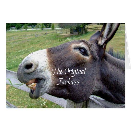 The Original Jackass Funny Donkey Mule Farm Animal Greeting Cards