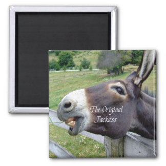 The Original Jackass Funny Donkey Mule Farm Animal Square Magnet