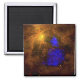 The Orion nebula in the infrared Magnet