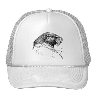 THE OTTER CAP