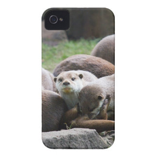 The otter family iPhone 4 cover