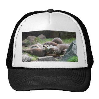 The otter family mesh hat