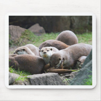 The otter family mouse mat