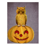 The Owl and the Jack O Lantern Post Card