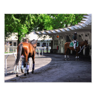 The Paddock at Belmont Park Photo
