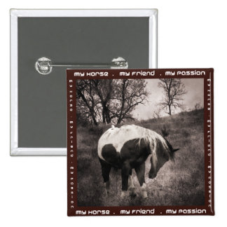 The Paint Horse II gifts & greetings Pinback Buttons