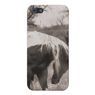 The Paint Horse II gifts & greetings iPhone 5 Cases