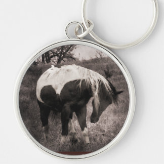 The Paint Horse II gifts & greetings Silver-Colored Round Key Ring