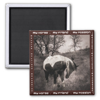 The Paint Horse II gifts & greetings Square Magnet