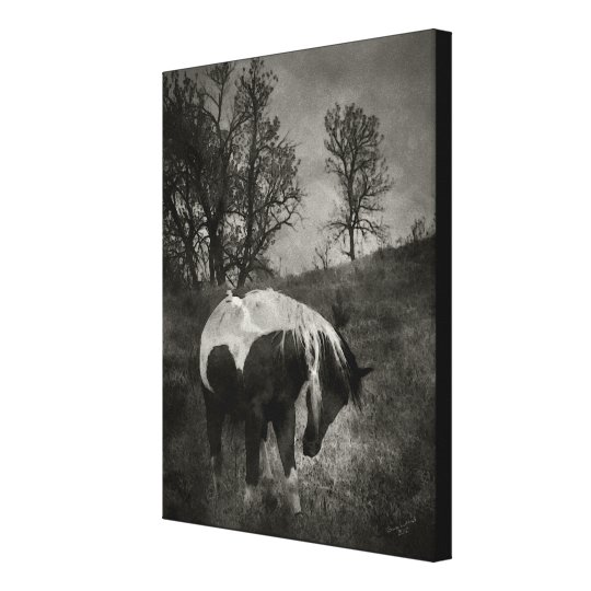 The Paint in Sepia Canvas Print