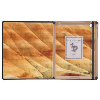 The Painted Hills In The John Day Fossil Beds 2 iPad Case