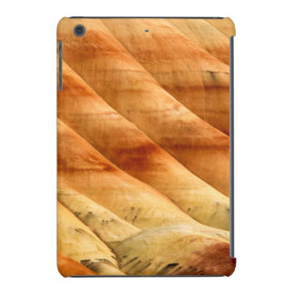 The Painted Hills In The John Day Fossil Beds 2 iPad Mini Case