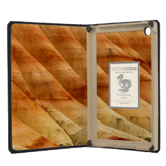 The Painted Hills In The John Day Fossil Beds 2 iPad Mini Cover