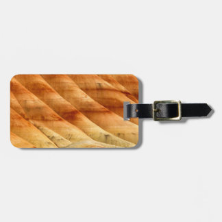The Painted Hills In The John Day Fossil Beds 2 Luggage Tag