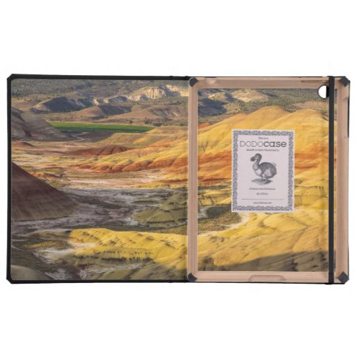 The Painted Hills In The John Day Fossil Beds 3 Case For iPad