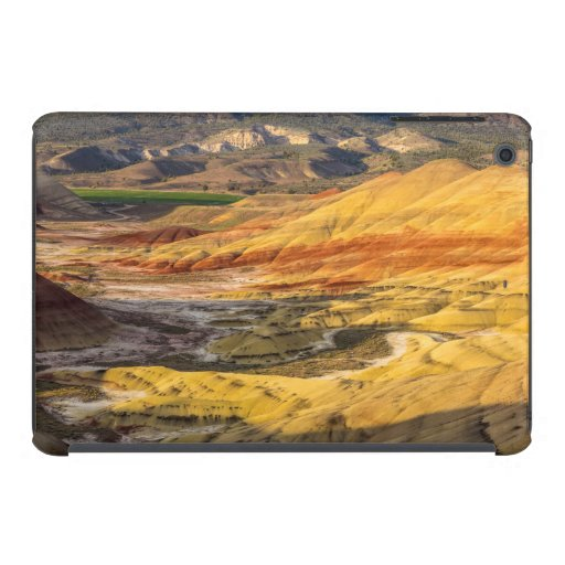 The Painted Hills In The John Day Fossil Beds 3 iPad Mini Retina Case