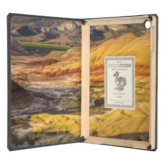 The Painted Hills In The John Day Fossil Beds 3 iPad Air Case