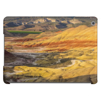 The Painted Hills In The John Day Fossil Beds 3 Case For iPad Air