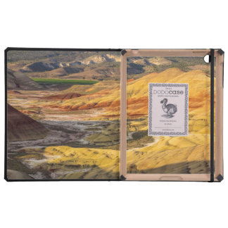 The Painted Hills In The John Day Fossil Beds 3 iPad Case