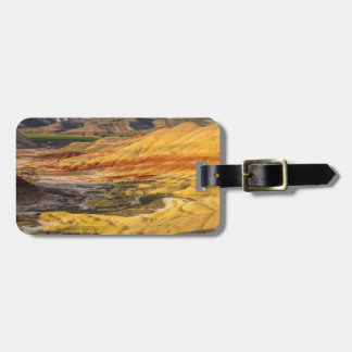 The Painted Hills In The John Day Fossil Beds 3 Luggage Tag