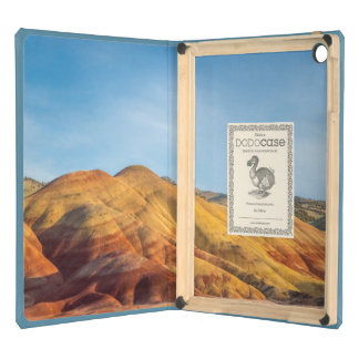 The Painted Hills In The John Day Fossil Beds Case For iPad Air