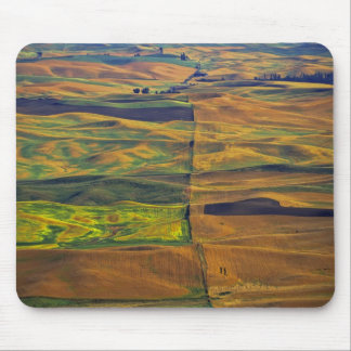 The Palouse from Steptoe Butte, Colfax, Mouse Mat