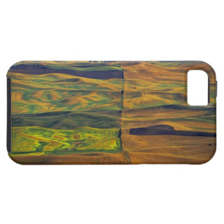 The Palouse from Steptoe Butte, Colfax, Tough iPhone 5 Case
