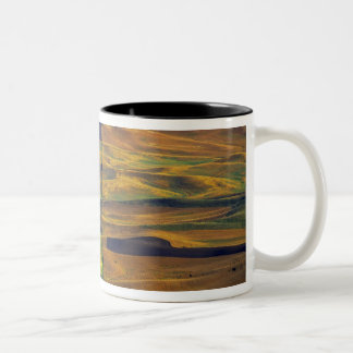 The Palouse from Steptoe Butte, Colfax, Two-Tone Coffee Mug