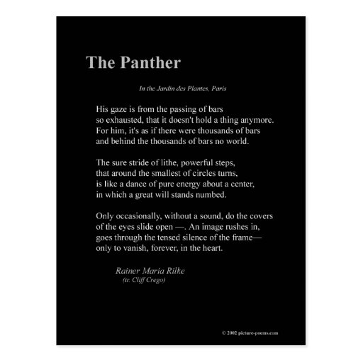 THE PANTHER POST CARDS