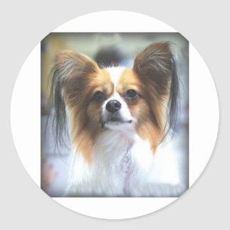 The PAPILLON Classic Round Sticker