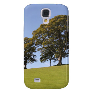 The Park Galaxy S4 Case