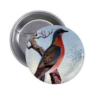 The Passenger Pigeon Pinback Button