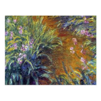 The Path Through the Irises by Claude Monet Postcard