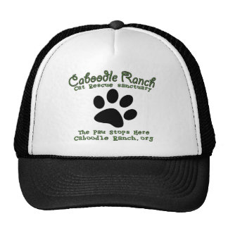 'The Paw Stops Here' Cap