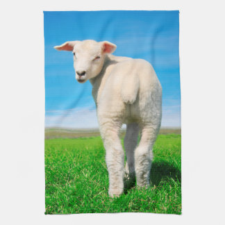 The peaceful sheep tea towel