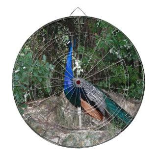 The Peacock Dartboard