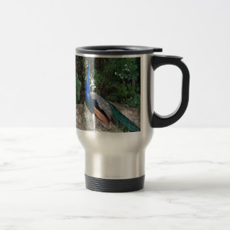 The Peacock Travel Mug