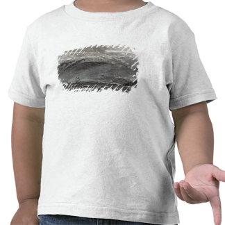 The Peak of Teneriffe, Sante Cruz Tshirt
