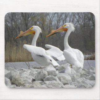 The Pelican Beak Mouse Mat