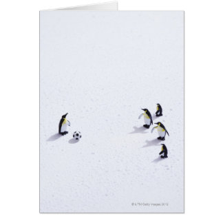 The penguins playing soccer greeting card
