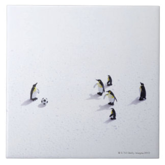 The penguins playing soccer large square tile
