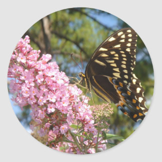 The Perfect Butterfly! Classic Round Sticker