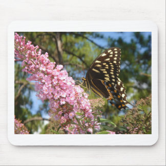 The Perfect Butterfly! Mouse Pads