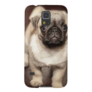 The perfect child  is a pug cases for galaxy s5