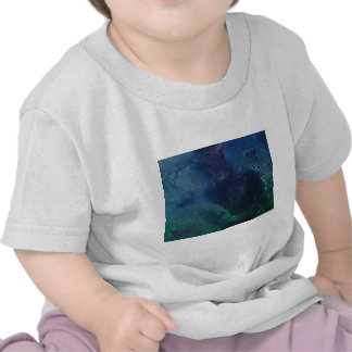 The PHANTOM of the OCEAN T-shirt