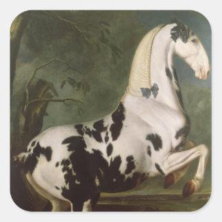 The Piebald Stallion at the Eisgruber Stud Square Sticker