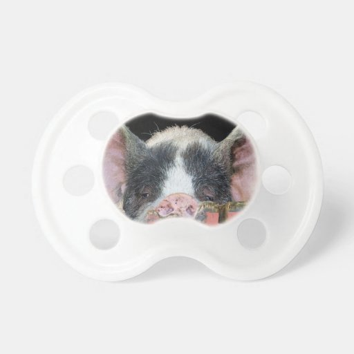 The Pig Baby Pacifiers