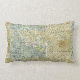 The Pilot Pillow! Lumbar Cushion